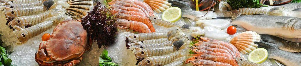 Shop hải sản khác